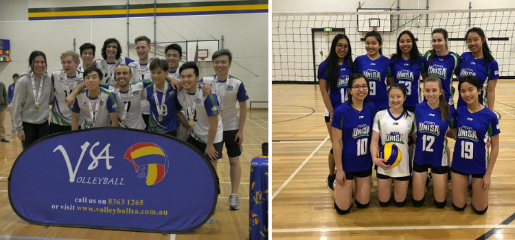 Volleyball Club images